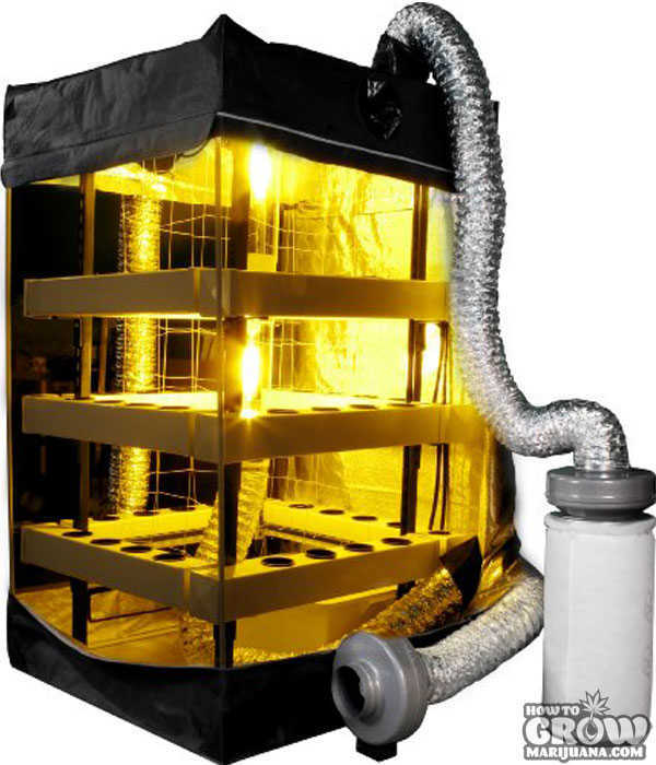 ... Buddha Box 5x5 Vertical Hydroponic Grow Tent  sc 1 st  How to Grow Marijuana & Grow Tent u2013 Hydroponic Tents Reviewed