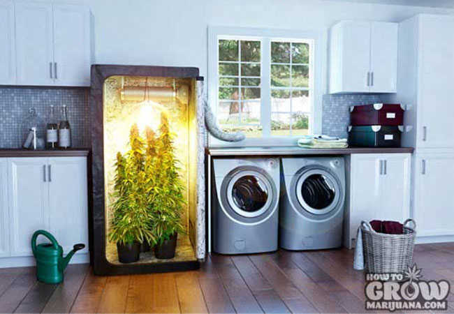 Grow Closet Soil Home Decor