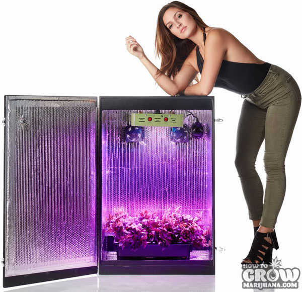 Stealth Grow Box