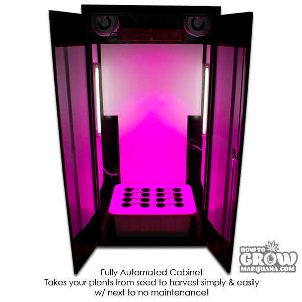 grow-box-super-locker-3