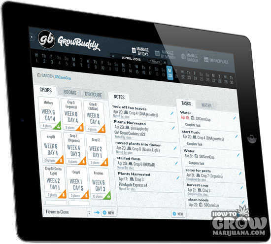 grow-buddy-app-ipad