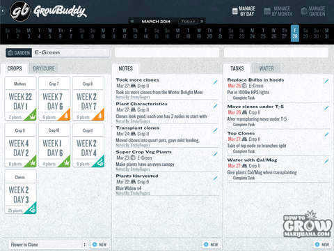 grow-buddy-schedule