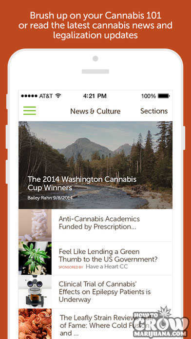 leafly-marijuana-strain-dispensary-news