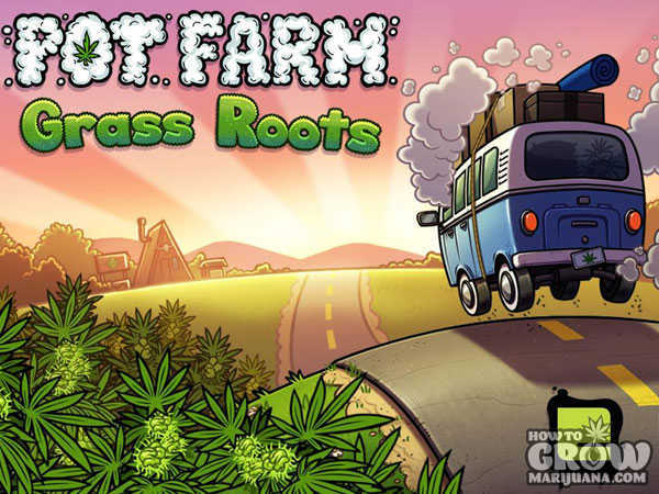 pot-farm-grass-roots