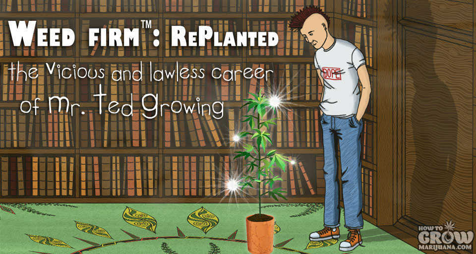 weed-firm-replanted-splash-screen