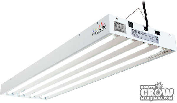 Charming Agrobite T5 Cfl Grow Light