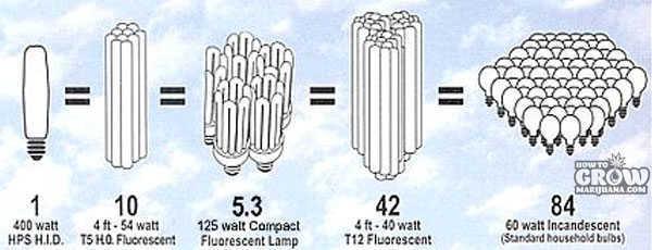 Compact Fluorescent Grow Lights