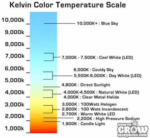 marijuana-grow-lights-kelvin-scale