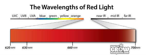 marijuana-red-light-band